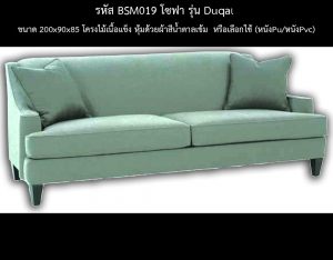 BSM019