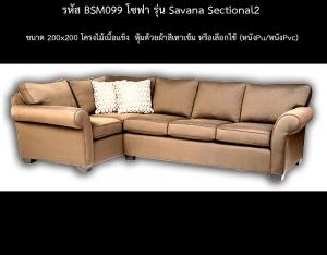 BSM099