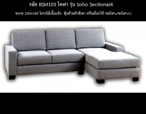 BSM103